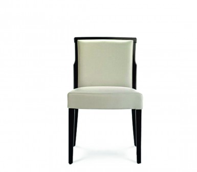Premium Dining Chair